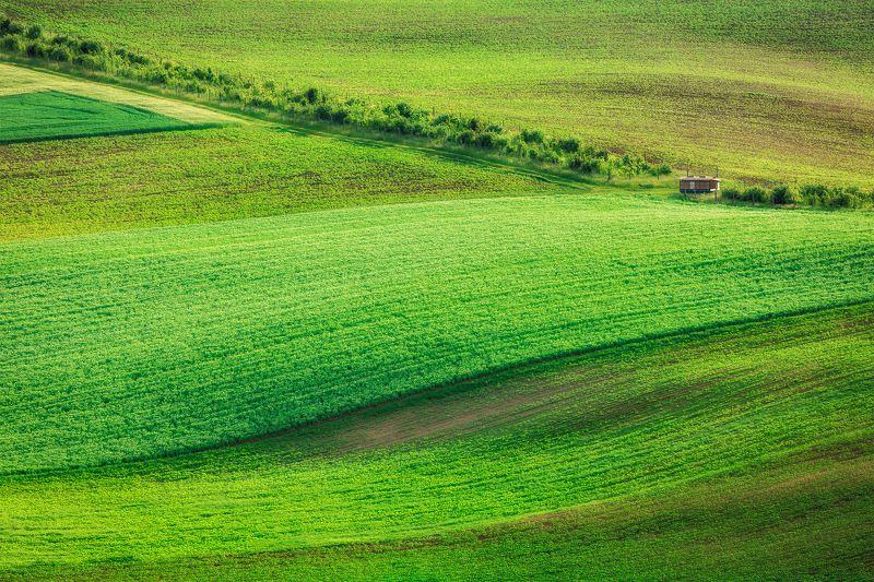 Моравия, пейзаж, Чехия photo preview