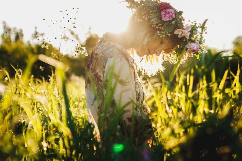 трава, закат photo preview