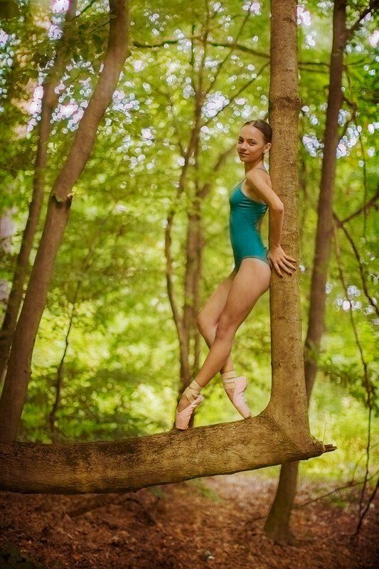 dance, nature, ballet, girl, portrait, ballerina girl, fine art, forest,  dancing with the naturephoto preview