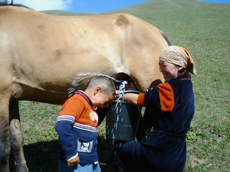 Berdibek Sultamuratov, Kyrgyzstan (Kyrgyzstan)