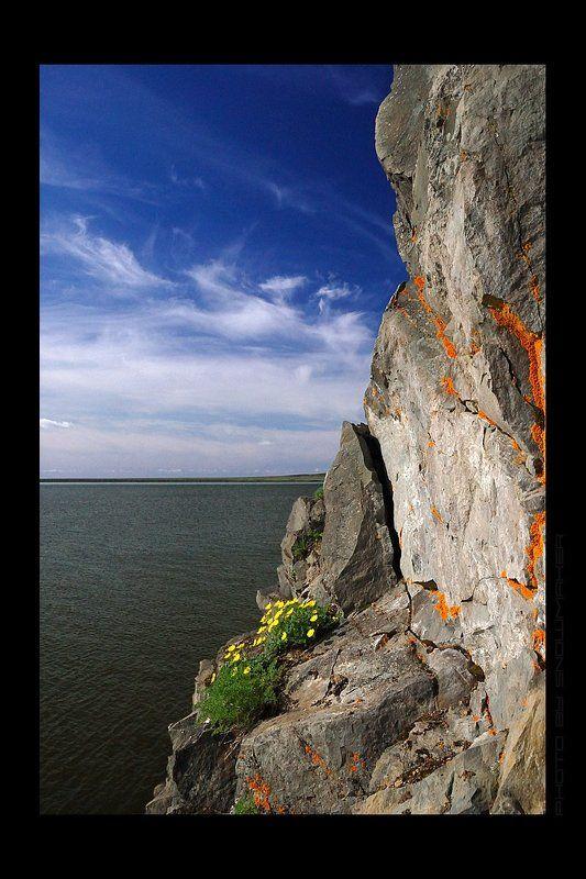 И на камнях растут цветы...photo preview