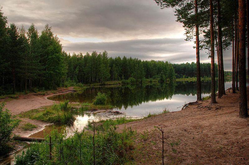 hdr, вода, деревья, евгений поздняков, красота, лес, лето, небо, облака,photoshop, озеро, отражение, отражения, пейзаж, природа, рассвет, ручей, утро Перед рассветомphoto preview