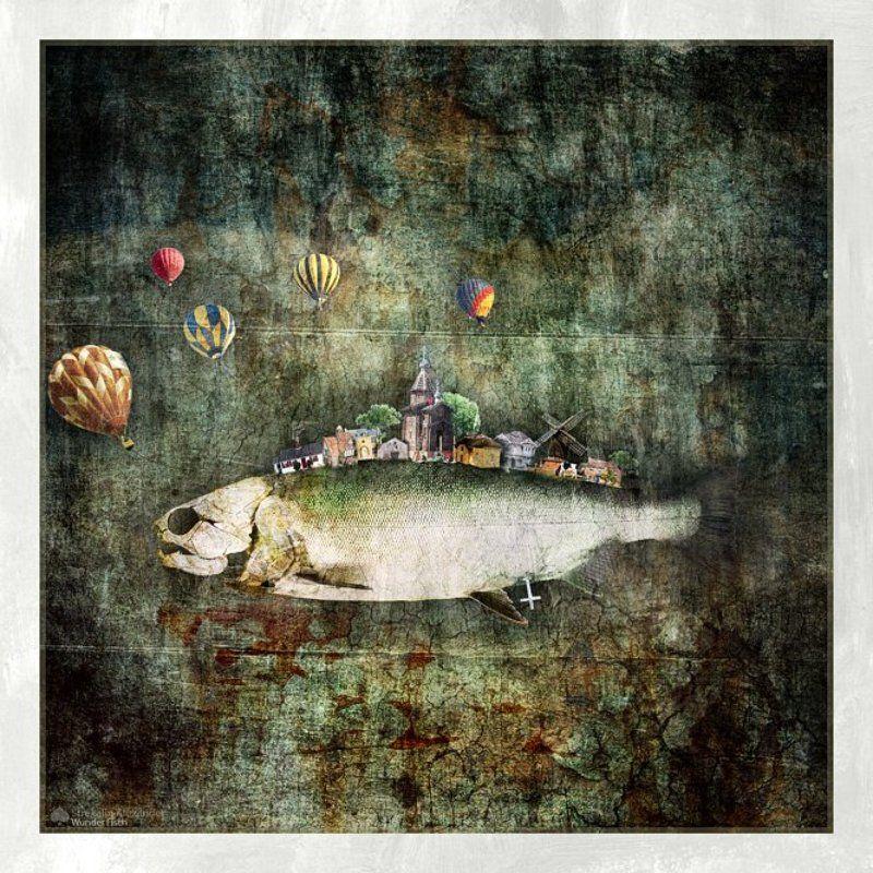 Wunder Fischphoto preview