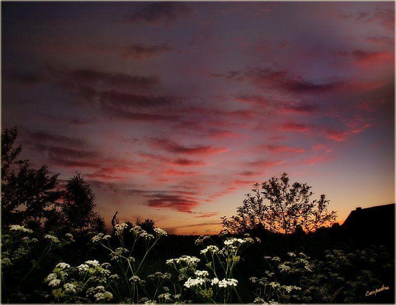 тверская область, харитоново, закат Эскалатор для уходящего солнцаphoto preview