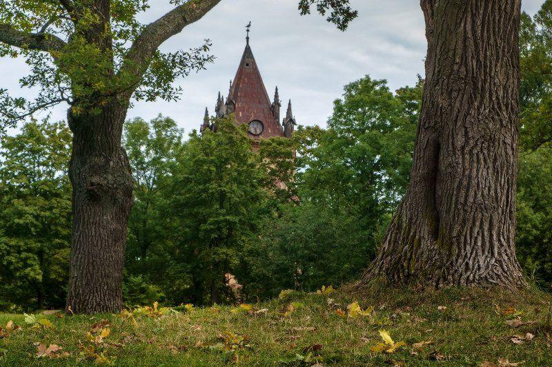 пушкин, царское, село, осень, александровский, екатерининский, парк про то, как начинается Осень...photo preview
