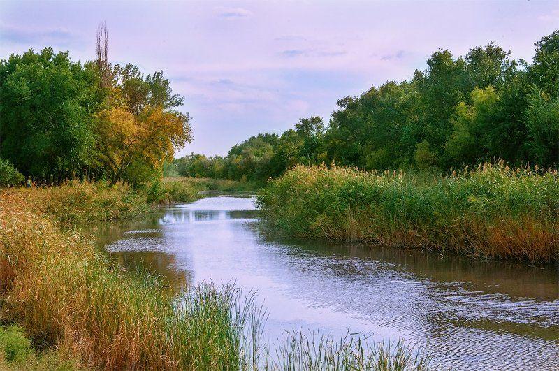 Закат, Камыш, Осень, Речка ***photo preview