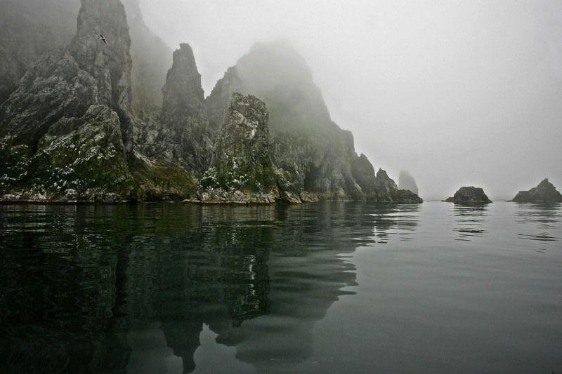Туманы острова Медныйphoto preview