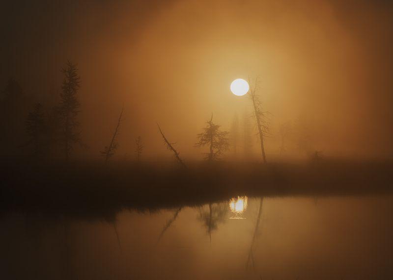 рассвет, утро, ямал, янао, уренгой, новыйуренгой, туман, отражение \