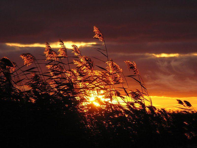 ладога, закат Звезда по имени - Солнцеphoto preview