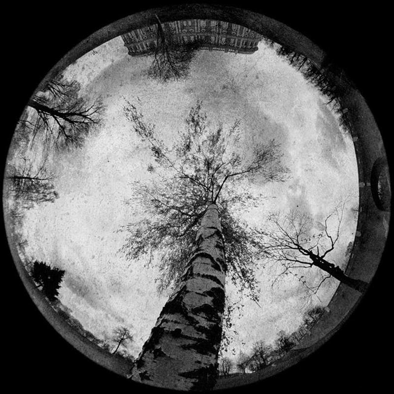 пеленг 8мм лунная. третьяphoto preview