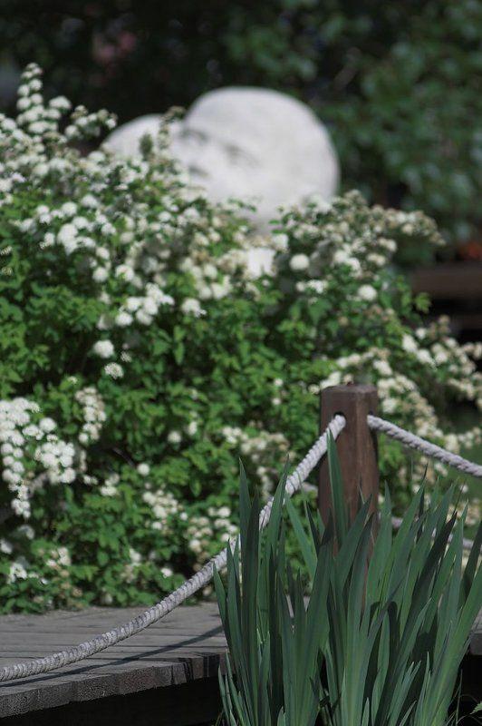 китай, цветы, мост Сад в китайском стилеphoto preview