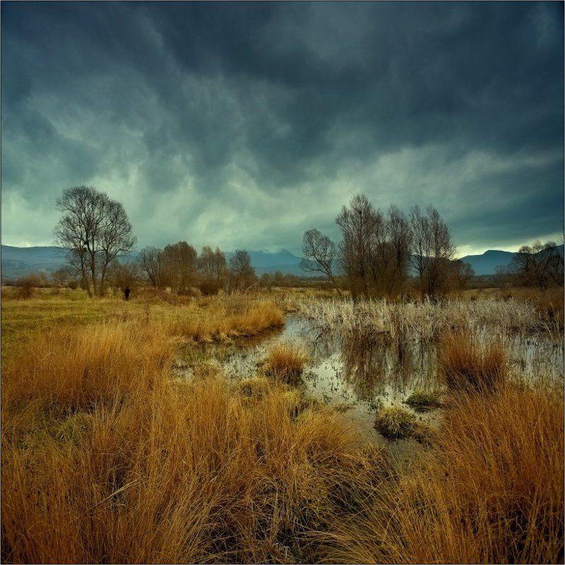пейзаж Ведьмин Прудphoto preview