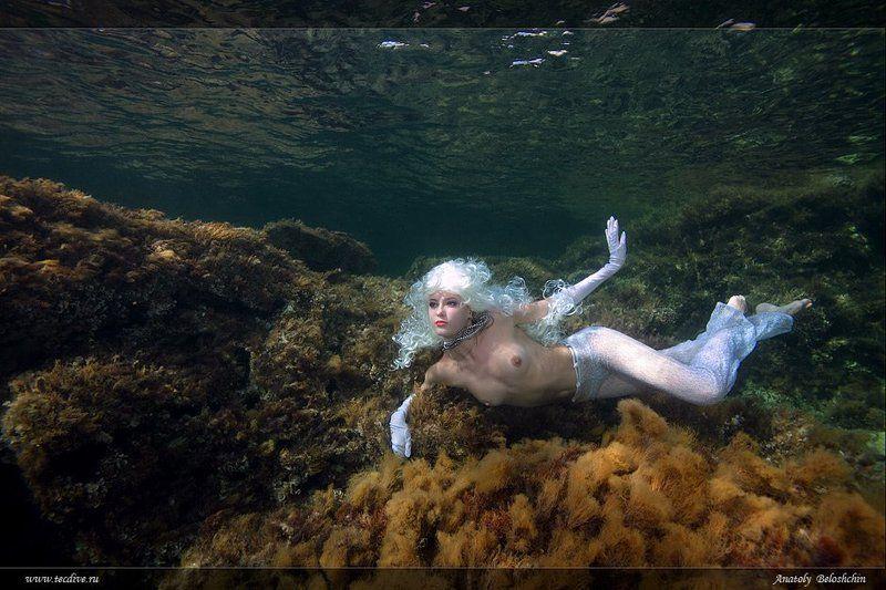афродита, aphrodite, cyprus, experience, competition, underwater, nudes, &, fashion, anatoly, beloshchin, seacam Принцесса Моря  (подводное фото)photo preview