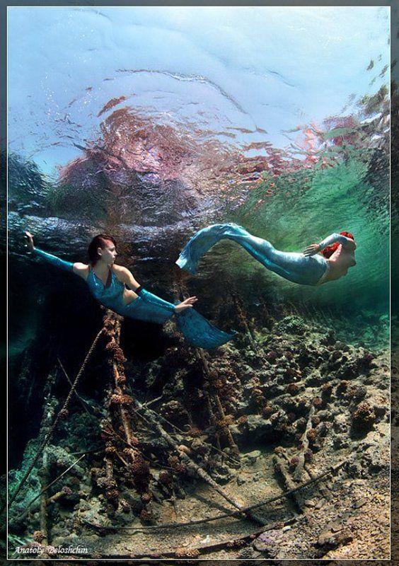 red, sea, big, brother, anatoly, beloshchin, underwater, nude, &, fashion, русалка, mermaid \
