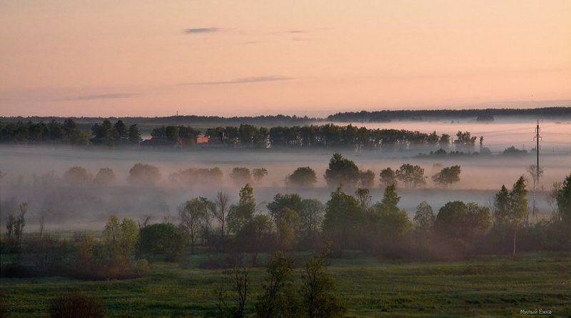 туман, утро, О тумане...photo preview
