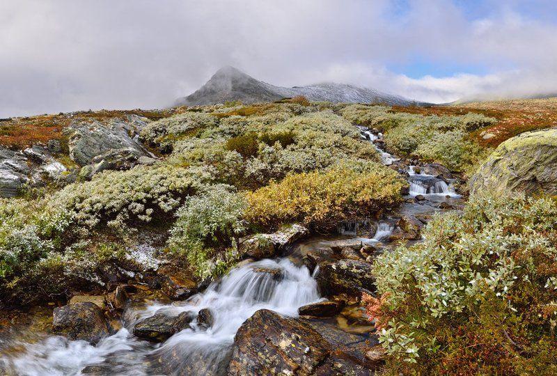 норвегия, горы, осень, ручей, первый снег Горный ручейphoto preview