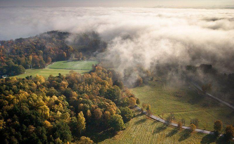 stockholm,sweden,misty,foggy,lands,patryk, Misty Landsphoto preview