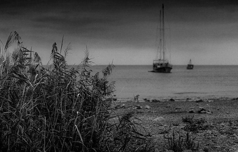 парусник, море, камыш, берег, штиль Стоянка...photo preview