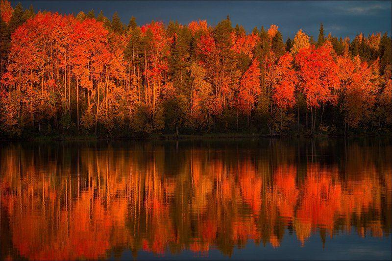 Огненный пейзаж.photo preview