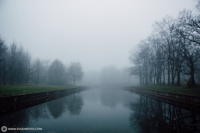 туман,осень,ноябрь,природа,пейзаж Ноябрский Туманphoto preview