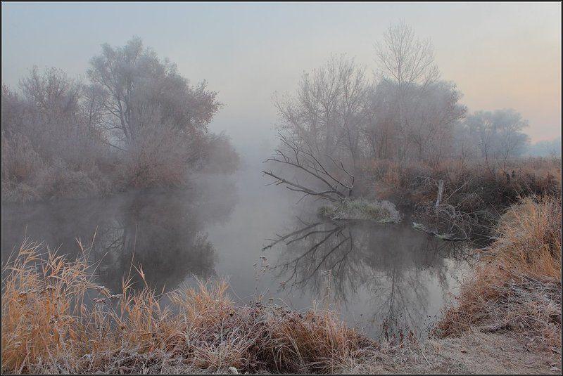 Утро Река Туман --photo preview