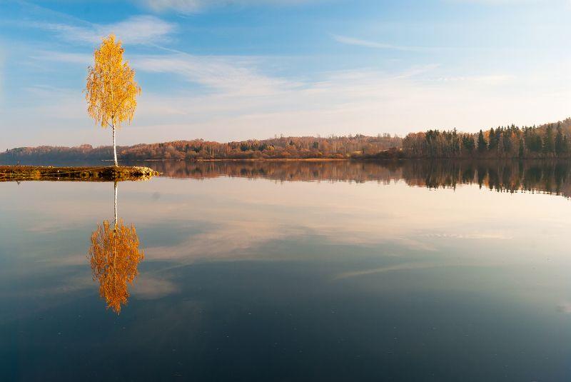 winstyle, Latvia