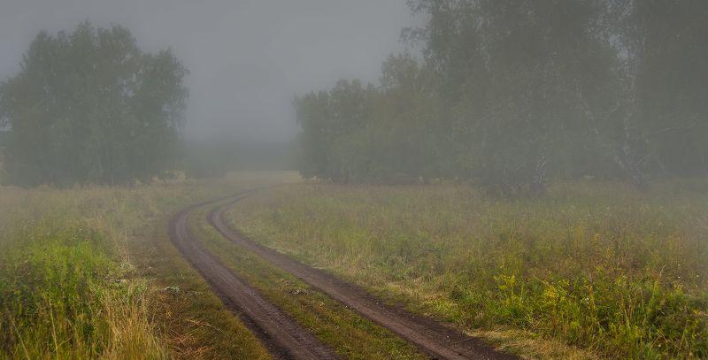 лес, туман Настроениеphoto preview