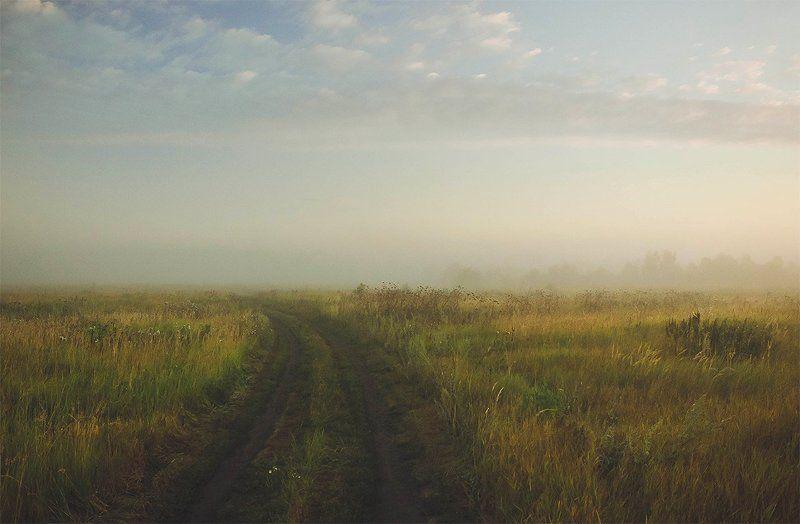 поле, лето, туман, утро Летнее утроphoto preview
