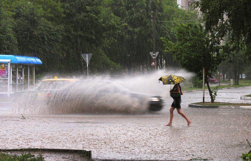 лето, дождь вот такое...... дождливое летоphoto preview