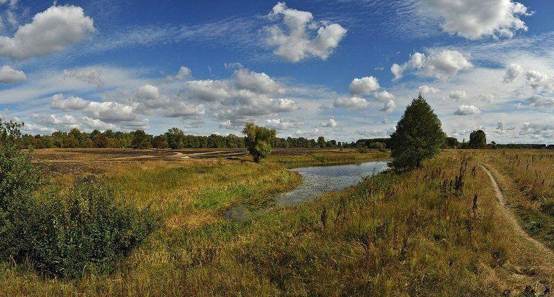 пейзаж,озеро,осень По дороге к озеруphoto preview
