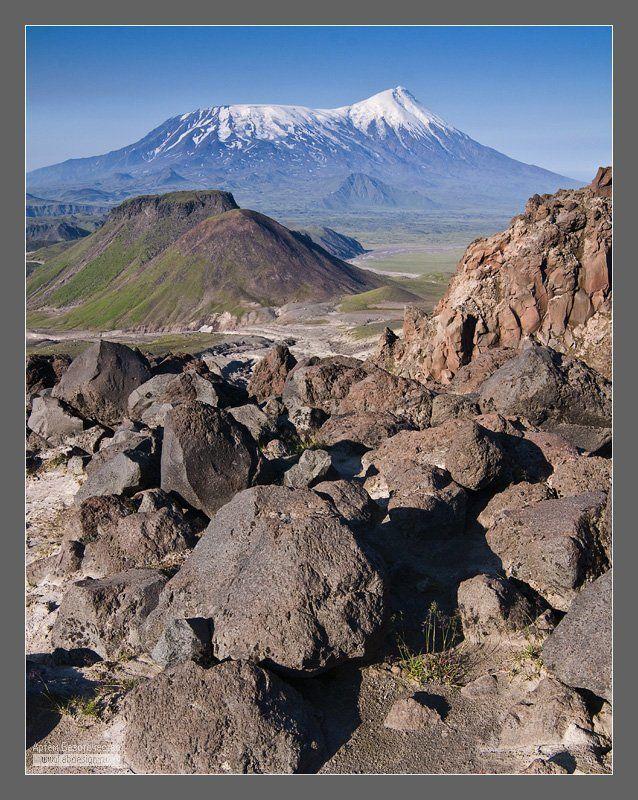 Толбачики со склона вулкана Безымянныйphoto preview