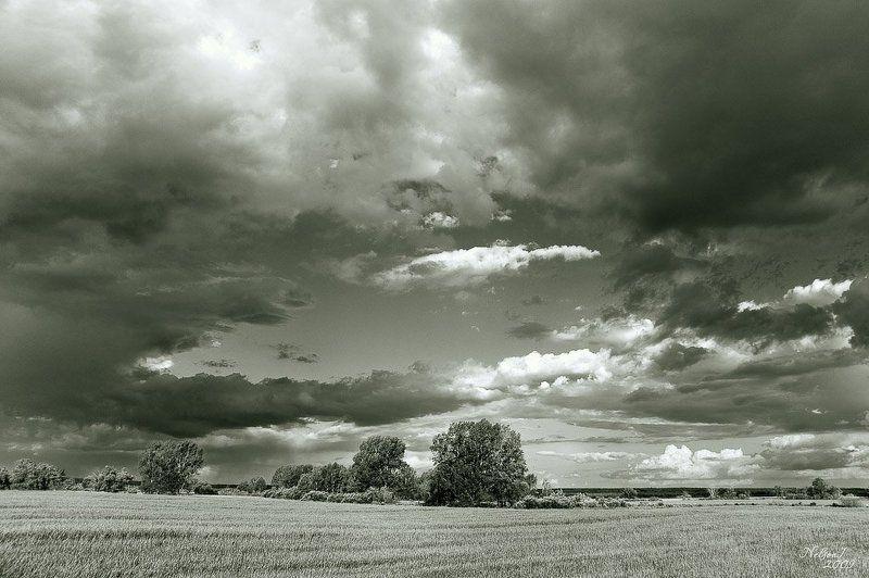 перед дождёмphoto preview
