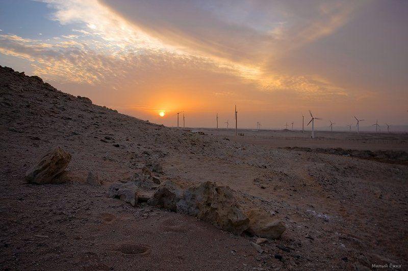 Паруса пустыни...photo preview