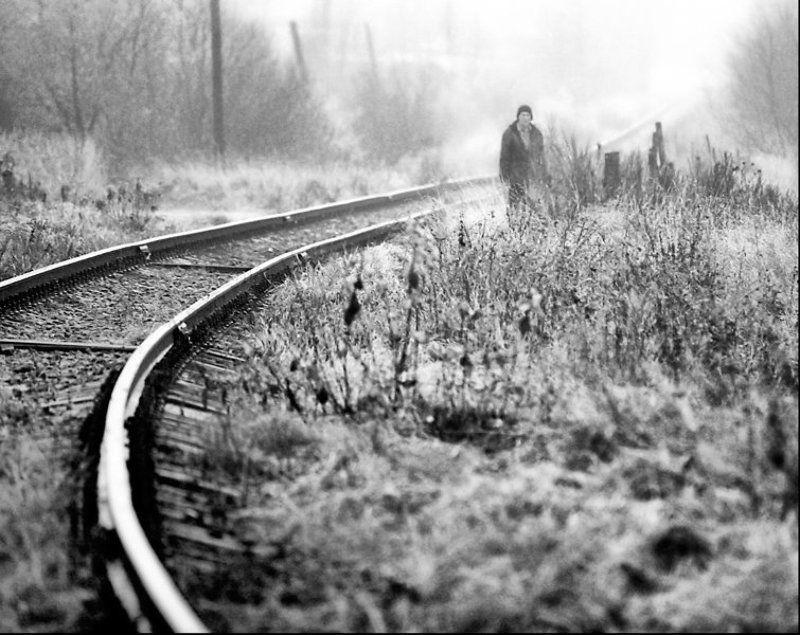 дорога уходящая в туманphoto preview