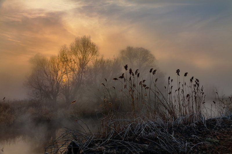Ноябрь. Восход. Туманphoto preview