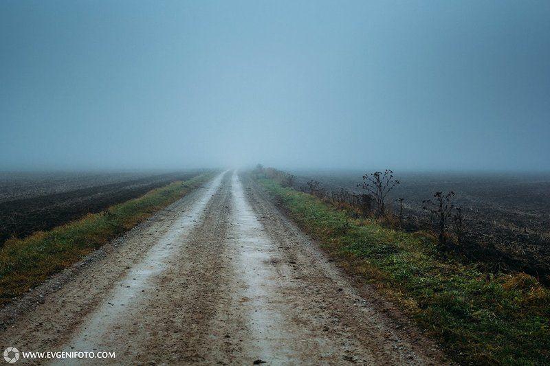 пейзаж,туман,дорога,поле,природа,осень Дорога в некудаphoto preview