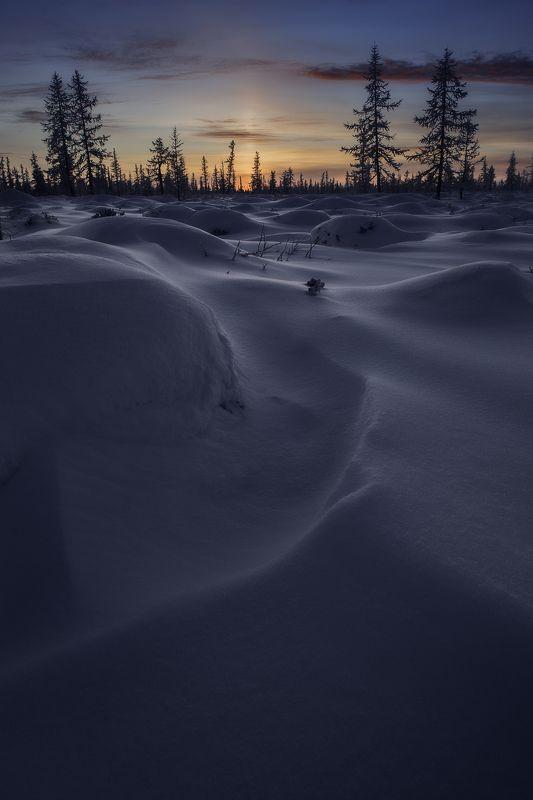 пейзаж, ямал, снег, надым, россия, сибирь, зима, тундра,лесотундра, закат Снежное безмолвие фото превью