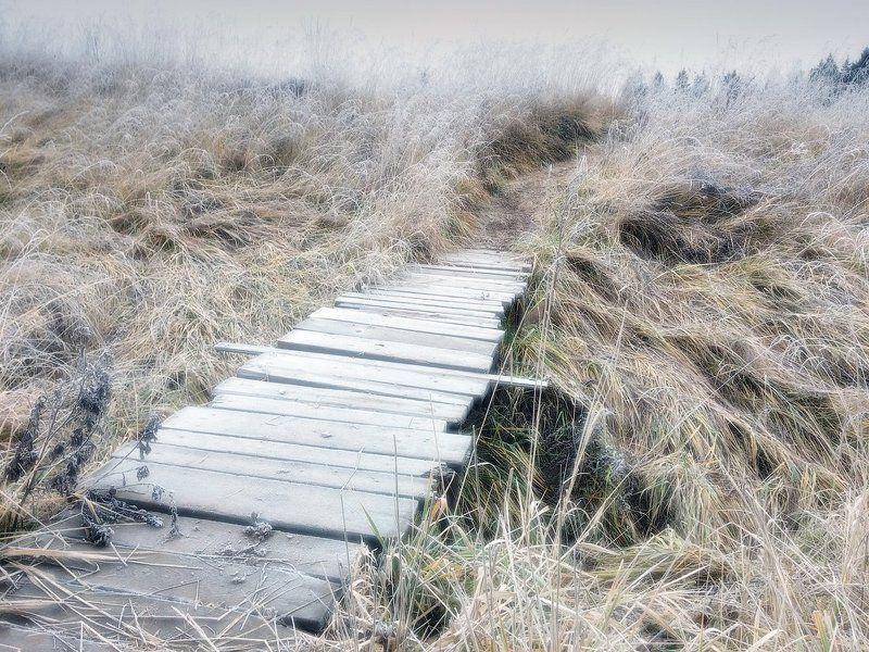 Иней, трава, мостик, тропа На пути в сказку...photo preview