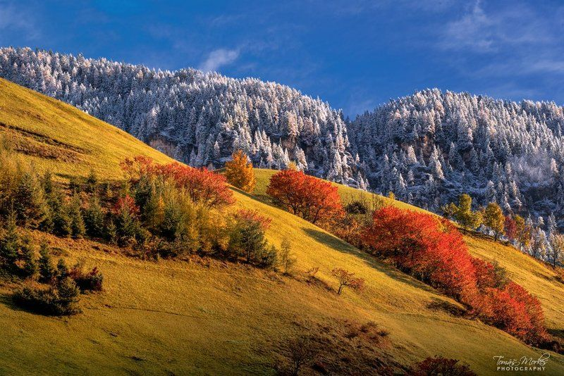 Dolomites, Alps, Italy, autumn, autumn colors, Alta Badia, snow, first snow, sun, clouds Autumn in the Dolomitesphoto preview