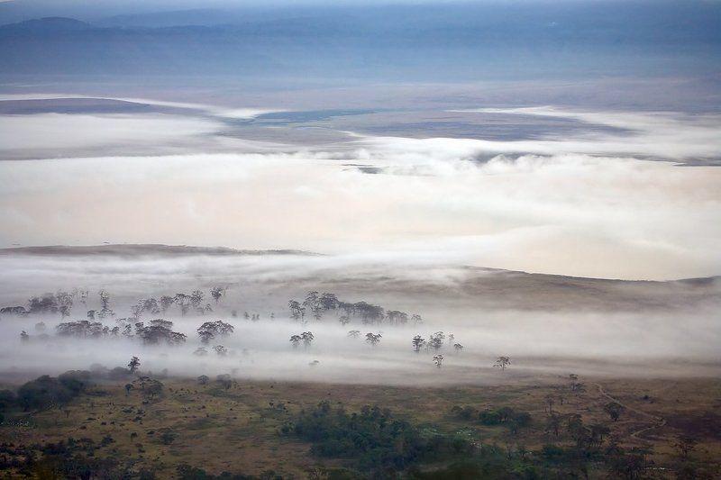 Дали туманные...photo preview