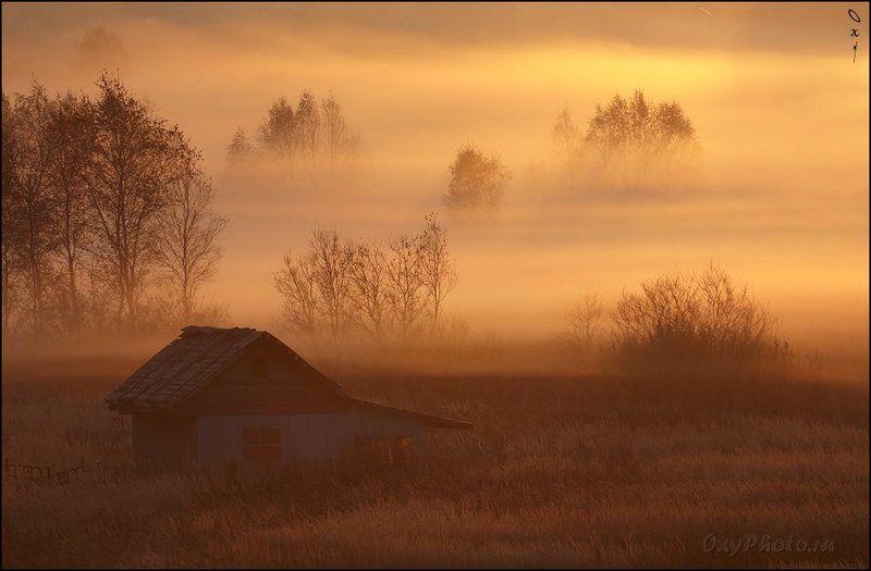 утро, рассвет, туман, дом Солнечный туман...photo preview