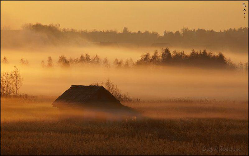 дом, рассвет, туман, утро, Вот такой туманный слоеный пирог...photo preview
