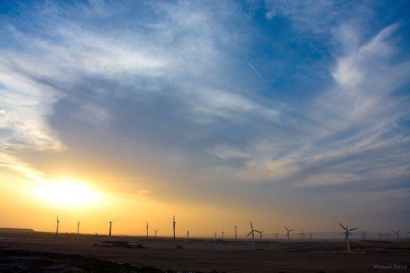 египет О ветре....photo preview