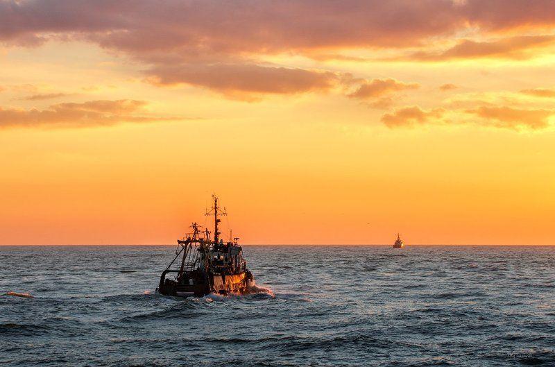 Балтика, Закат Вечер, Море/, Рыбаки, Судно, Траулер Пахари моряphoto preview
