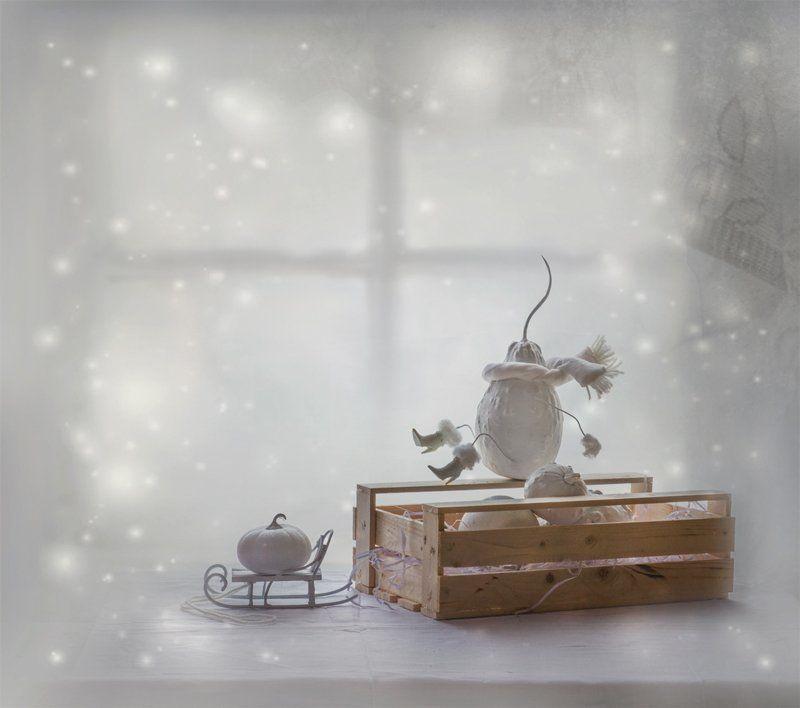 зима, настроение, натюрморт, тыквы, юмор ... Нам бы эту зиму пережить ...photo preview