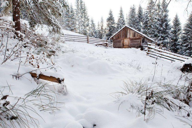 Карпаты, природа, пейзаж, зима, хижина, дом, снег, холод, мороз хижинаphoto preview
