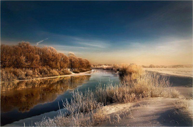 На белом покрывале января..photo preview