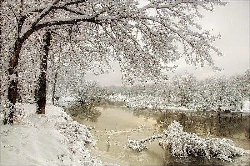 В краю снегов и туманов..photo preview