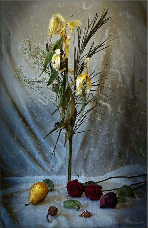 увядшие, цветы. Осень жизни.photo preview