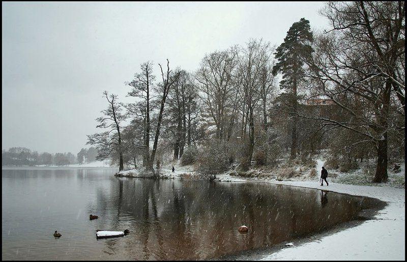 санкт-петербург, озерки, зима Озерки. Ноябрь.photo preview